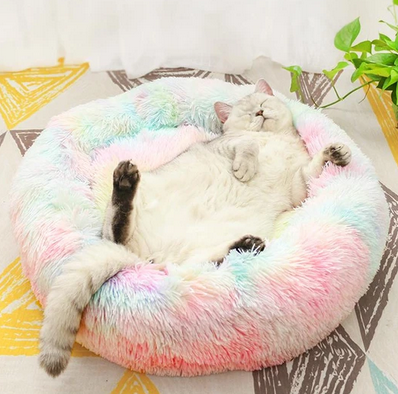 4 Manfaat Tempat Tidur Marshmallow untuk Hewan Peliharaan
